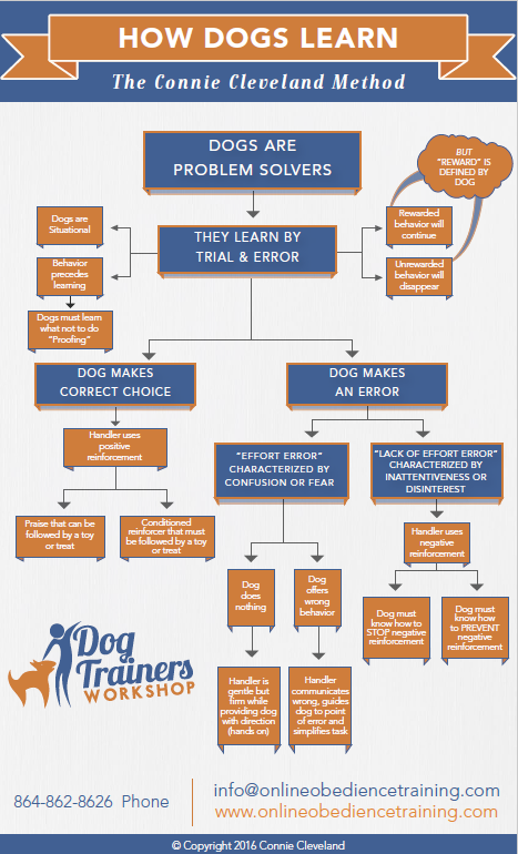 New Dog or Puppy - Dog Trainers Workshop - Flowchart